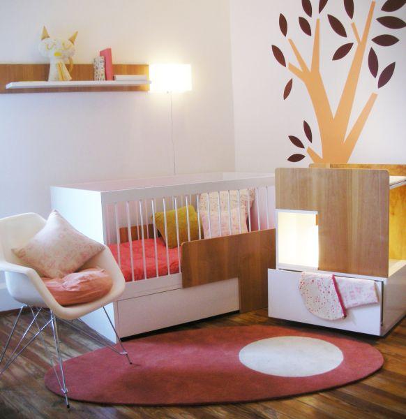 Nace MOLA,  la combinación perfecta de diseño sustentable y funcionalidad