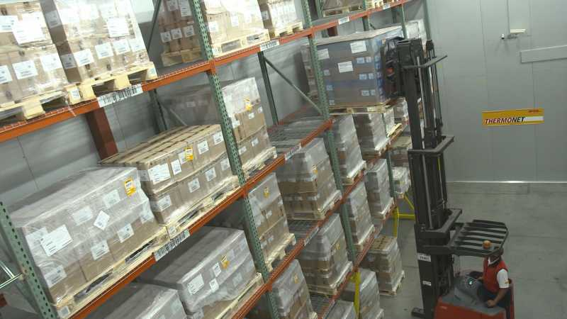DHL ofrece en Argentina cadena de frío confiable de punta a punta en América