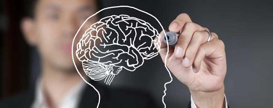5 lecciones de neuromarketing que las marcas pueden usar para posicionarse