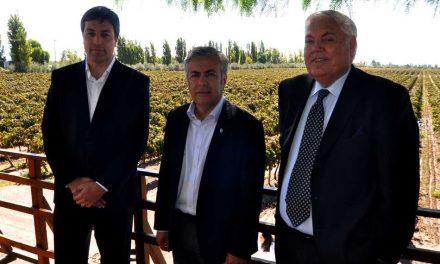 Bodega Trivento realiza inversión de 75 millones de pesos