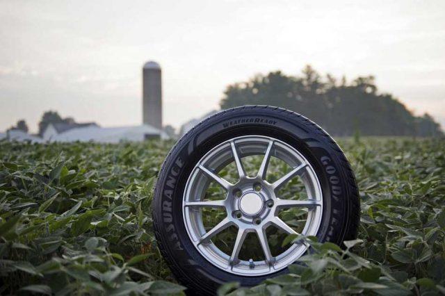 Goodyear usa caucho hecho con aceite de soja para fabricar sus neumáticos