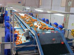 San Miguel finalizó el proceso de adquisición de una importante compañía frutícola peruana