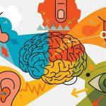 ¿En qué consiste la neurocomunicación?