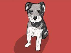 Unilever y sus amenazas a Facebook y Google: ¿perro que ladra no muerde?
