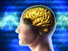 La Neurociencia del consumidor en el mercado del lujo