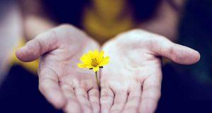 El valor de lo tangible