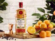 Un nuevo gin inspirado en las naranjas de Sevilla